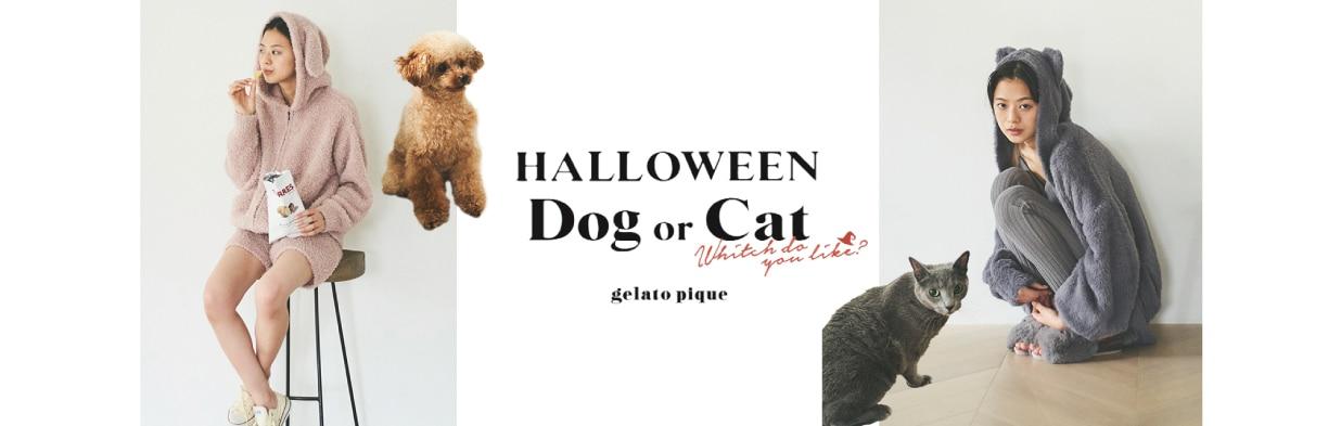 HALLOWEEN Dog or Cat