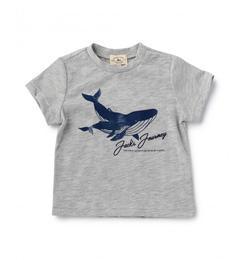 【グリーンレーベルリラクシング/green label relaxing】 【ベビー】クジラプリント Tシャツ ショートスリーブ [3000円(税込)以上で送料無料]