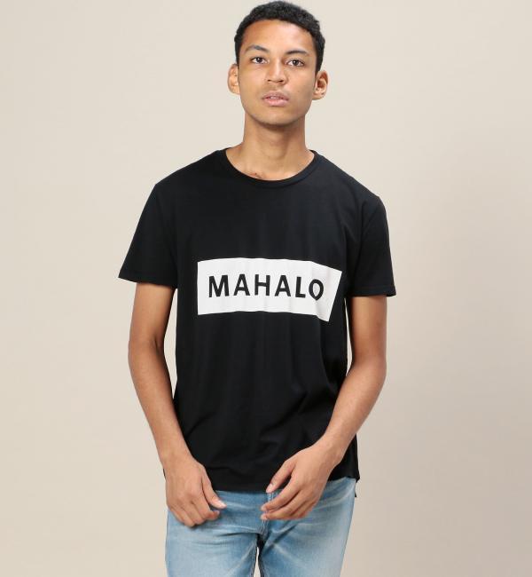 【ビューティアンドユース ユナイテッドアローズ/BEAUTY&YOUTH UNITED ARROWS】  MAHALO TEE/Tシャツ [送料無料]