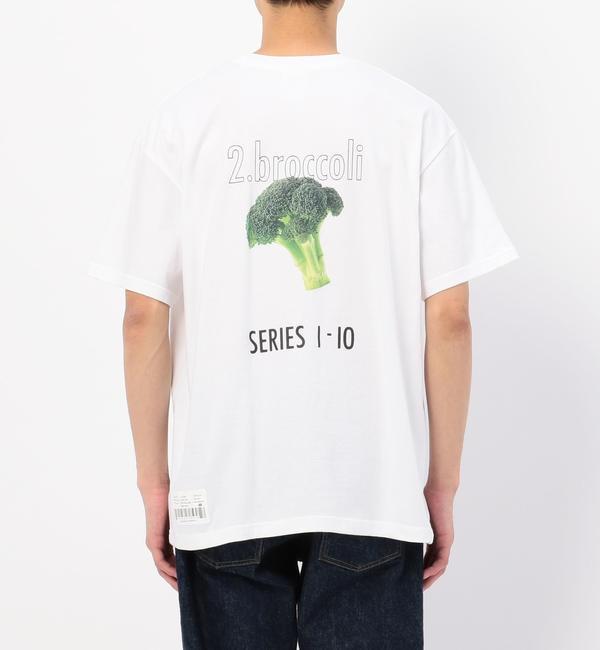 【ビショップ/Bshop】 【CCRT】Tシャツ BROCCOLI MEN